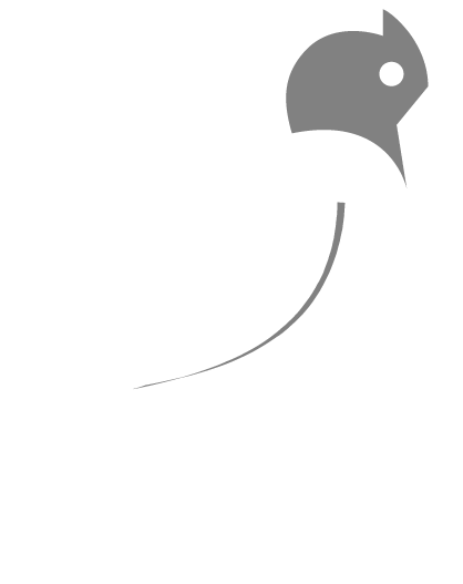 wagtail-bird-inverted.png